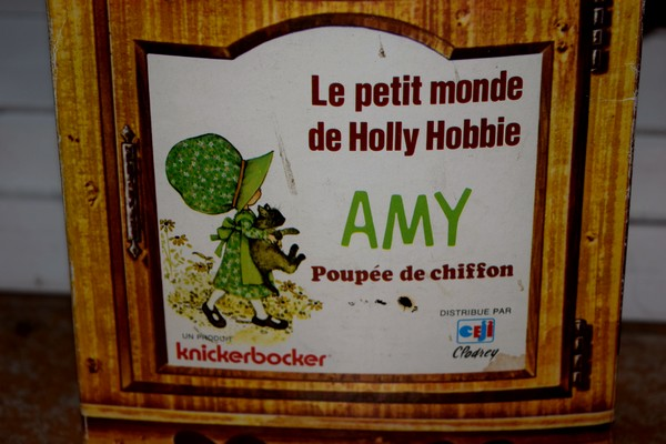 Amy Holly Hobbie (2)